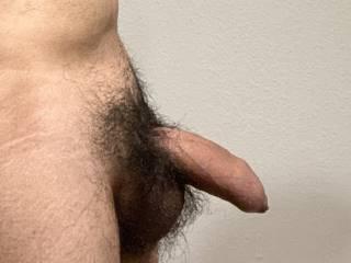 My hairy uncircumcised cock