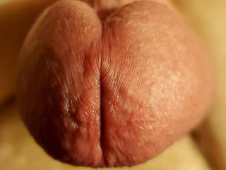 Suckable cock dick penis head close-up