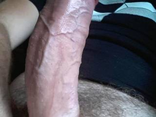 Good looking cock. Can't wait to see more of it.