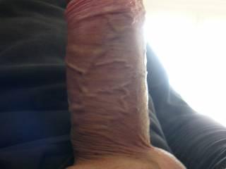 Very horny cock