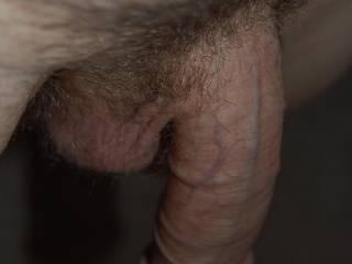Oooo, how I love seeing a hanging or dangling soft cock.  I like to touch, play or suck it until its hard....then the fun begins.  K