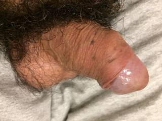 Hairy cock and balls for some lovely girls here... You just have to make it grow up...
