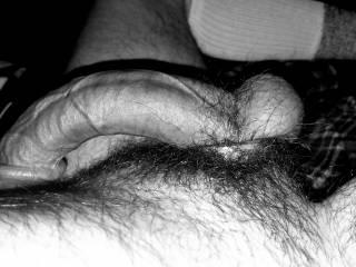 Can a big stiff dick be called art?
