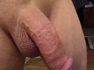 Would you like to feel my shaved cock grow in your mouth?