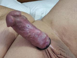Trying on my new cock ring .. what ya think ? Does it fit ?