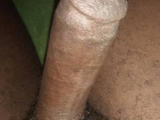 Small hard hornw