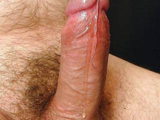 i'd like to taste your dripping cock