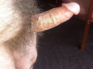 Standing In The Hotel Rom Window Showing Off My Big Hard Hairy Cock To The Public