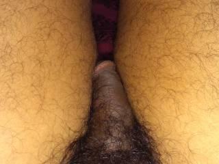 Penis in between legs