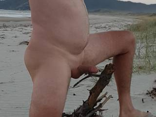 Resting my cock on some wood at the beach.