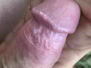 My hard thick cock is needing some attention, anyone interested