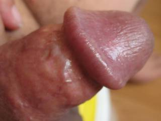 I was playin\' with my cock.  See how I got it to stand up?    Anyone want to suck this?