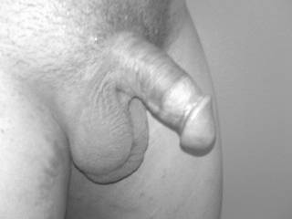 a black and white photo of my beautiful cock... Can someone get it fully HARD??