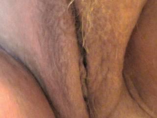 hairy pussy