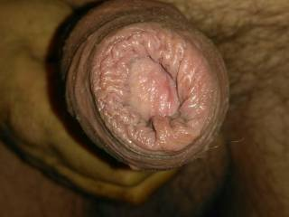 A little something for the foreskin lovers..