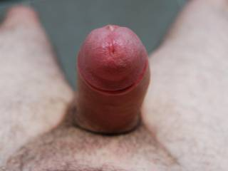 I love to see photos of a cock pointed directly at the camera. This is the way I would see it as it is about to enter my mouth.  HD