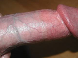 Hard cock getting ready to cum for a tribute! Post a pussy/tits tribute with my cock pic and I will cum on you next!