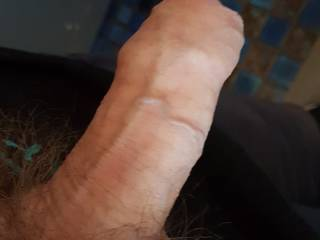 Thought I\'d hang out my half hard cock looking for anybody to help with this