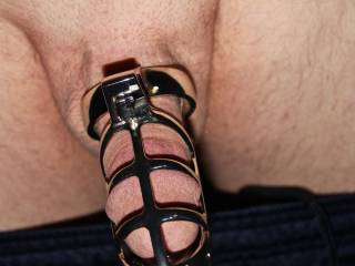 Your cock looks so nice all locked up!