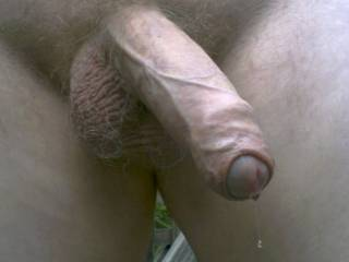 personally i'd love to grab and lick and suck that awesome long thick uncut tennessee horse cock!! beautiful!!