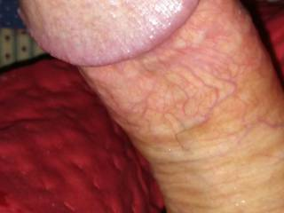 Leaking that delightful pre cum! Anyone like what they see?!