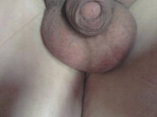 just showing my tiny cock
