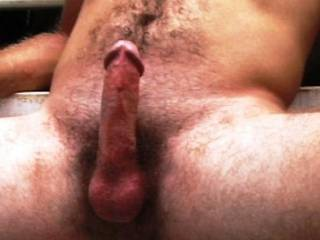 dang...I hate to be just obviously nasty...but man would I like to eat that hairy ass...lick those hairy balls...and take that cock in my mouth till your balls lay on my chin...man...you have all the right stuff