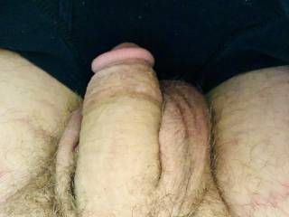 My fat dick just wanting pussy
