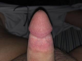 Just a picture of my small cock. No tribute this time. Message me if you want me to tribute you!