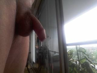 After a good session on Zoig, I get so horny my cock drips with precum. Would love to share it and feel a hot mouth close around it.