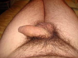 Nice uncut penis nicely nestled in a nice natural hairy setting.