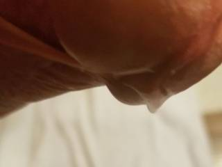 Close up pic about our friend\'s precum cock... He shot some pics about me (asked by us) and wasn\'t able to ceep calm... seen he got rockhard during shooting me, i asked to show his beauty dick...