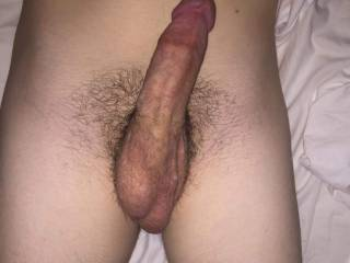Hard young cock