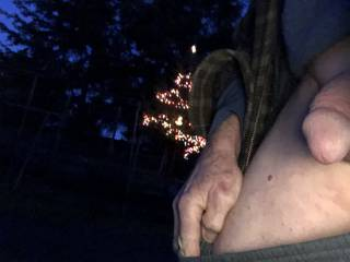 I told a friend I was out for a walk and she dared me to flash my cock and take a photo.