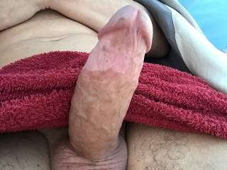 Camping on vacation and playing with my hard cock in my tent. I like to let the door open so everyone can have a look inside ;)