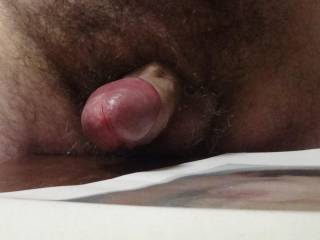 My cock head about to explode after edging in chat. Who will give me the suck I need so bad?