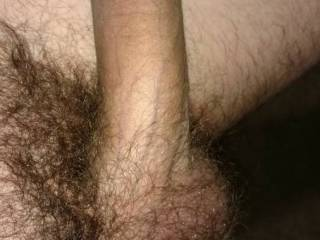 Just a pic of my dick untrimmed