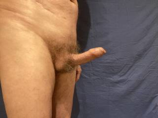 Would you like to examine the excess foreskin at the tip of my erection?
