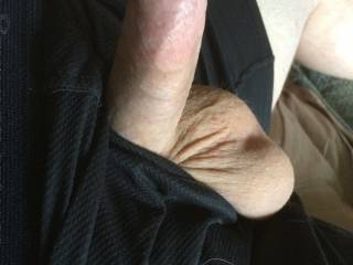 A hard dick in boxers