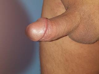 My small cut cock