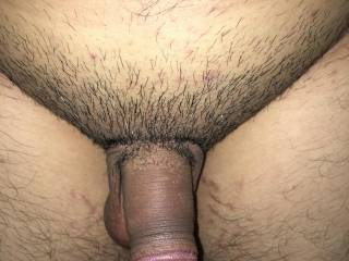 Shaved Asian dick