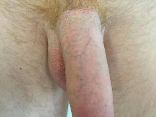 Hanging is OK because I would have it hard in no time.  I love feeling a man's cock grow as I suck him.