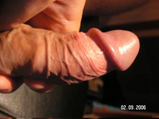 nice head on that cock..love to lick it and taste the cum as it leaks out