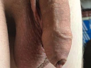My uncut soft dick...wanna make it hard?!?