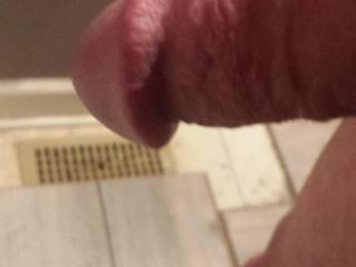 Dripping pre cum . Getting hard. Want to unload in a wet pussy or heck I\'ll let anyone who wants have it. . !!! Guy ?? Anyone! ! ??