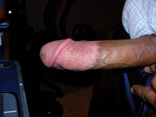 Dick, cut, hard
