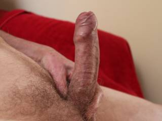 'He' looks so swollen and erect that I am sure that 'He' not only will we fuck until we have the most explosive orgasms but that 'He' will deliver the most amazing, large thick load of cum, splattering it against your cervix.