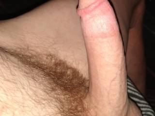 I should have shaved my dick a long time ago
