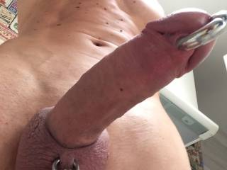 Who wil suck my cock?