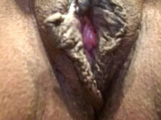 Fresh shaved cunt